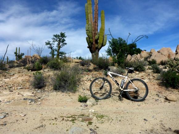bike_shotweb