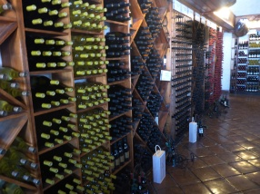 la-cetto_wineery