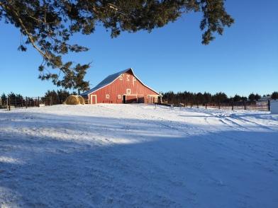 Loup_farm
