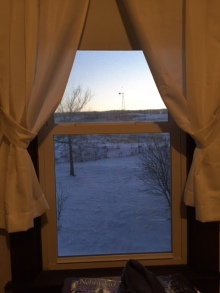 Peaceful view from the bathroom window at the farm.