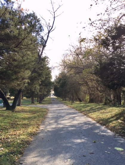 dickinson driveway