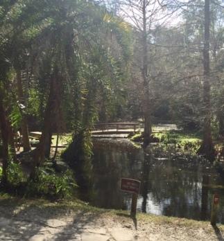 ravine gardens2